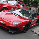 Lamborghini Aventador by Rorymacve