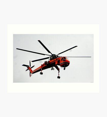 The Flying Gnat Art Print
