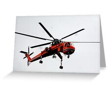 The Flying Gnat Greeting Card