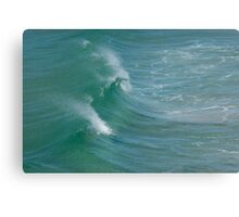 Splash Back Canvas Print
