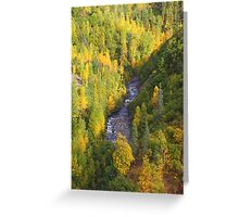 Denali Colours Greeting Card