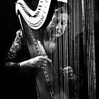 Harpist by Gwynne Brennan