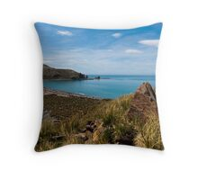 Gold Harbour Throw Pillow