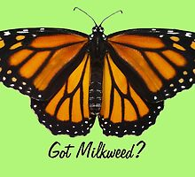 Monarch Butterfly - Got Milkweed? by EggSpecially