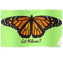 Monarch Butterfly - Got Milkweed? Poster
