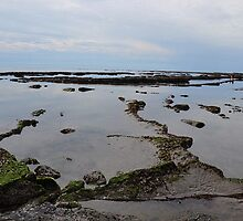 Shapes and Pattens at Low Tide Lyme Dorset UK by lynn carter