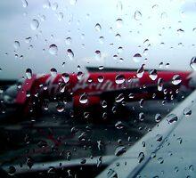 Raindrops  by Vandana Indramohan