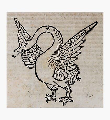 Hic Codex Auienii Continent Epigrama Astronomy Rufius Festivus Avenius 1488 Astronomy Illustrations 0164 Constellations Photographic Print