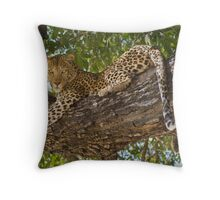 Leopard nap time Throw Pillow
