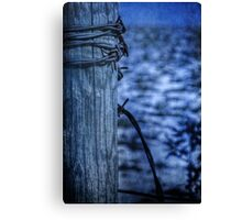 Barbed Wire in Blue Canvas Print
