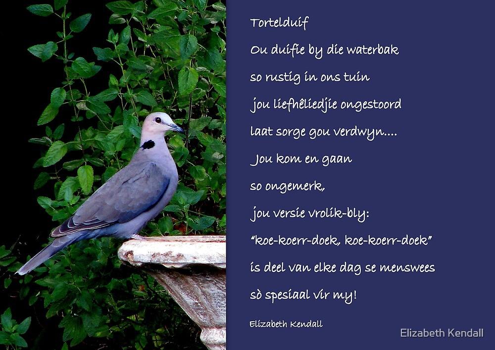 Tortelduif by Elizabeth Kendall