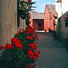 Santa Catalina Monastery - Arequipa, Peru by apple88