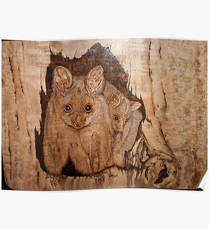 Possum Mum & Bub Poster