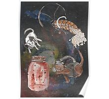 Space Animals Collection #3 Poster