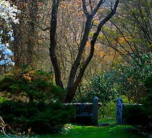 Enchanted Garden Gate by Monica M. Scanlan