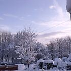 Winter's scene from the front door by ANDREW BARKE