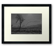 Snow scene, in black and white.  Framed Print