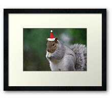 Squirrel Elf Framed Print