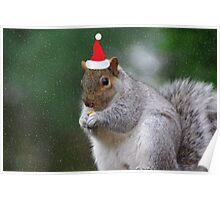 Squirrel Elf Poster