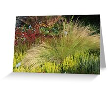 Colours of Autumn Greeting Card