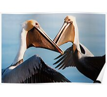 """Chatting Pelicans"" - animated brown pelicans Poster"