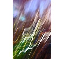 holly leaf abstract Photographic Print