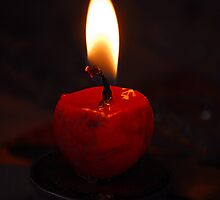 Candlelight  by vbk70