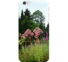 A Feast for your Eye iPhone Case/Skin