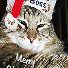 Merry Christmas To All by Terri Chandler