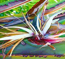 Banana Flower by Atanas Bozhikov Nasko