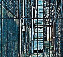 locked alley with steps to the street, Birmingham, AL by Gerry Daniel