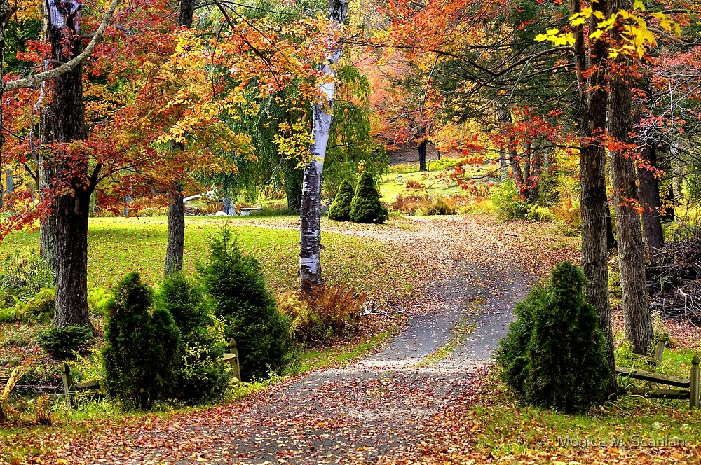 Autumn in New England by Monica M. Scanlan
