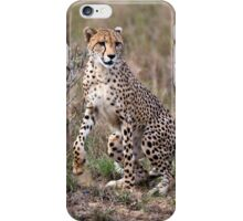Spring to action ! iPhone Case/Skin
