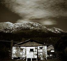 Derelict by Shane Viper