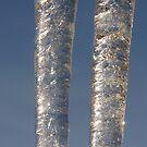 Icicle Twins by Mark Bateman