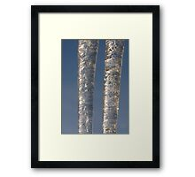 Icicle Twins Framed Print