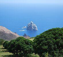 A tiny island of the small island of St Helena, SAO by dizzyshell42