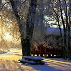 Norwegian Winter by AmyKippernes
