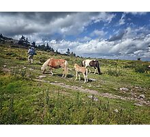 Hiking Grayson Highlands Photographic Print