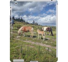 Hiking Grayson Highlands iPad Case/Skin