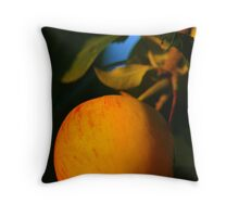 Apple in the Sun Throw Pillow