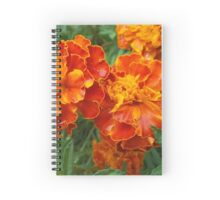 Vibrant Red-Orange Flowers Spiral Notebook