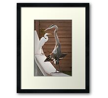 """Flasher"" - a great blue heron seems to be exposing itself Framed Print"