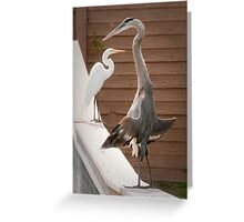 """""""Flasher"""" - a great blue heron seems to be exposing itself Greeting Card"""