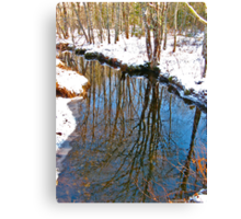 Reflections in the Stream III Canvas Print