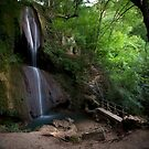 Soko Banja Waterfall  by Sam Ilic