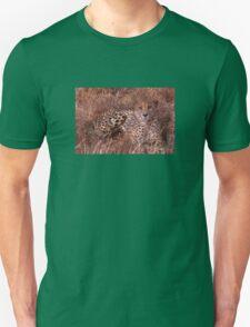Cheetah Stare Unisex T-Shirt