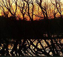dark horizon at dusk by tamarama