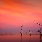 Lake Mulwala impression 2 by Hans Kawitzki
