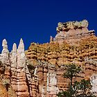 Sandcastles in the Sky ~ Bryce Canyon by Vicki Pelham